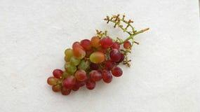 Пук виноградин Стоковые Фотографии RF