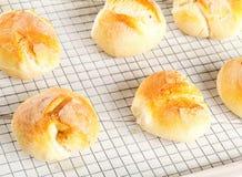 Пук всех, свежих испеченных плюшек пшеницы на охладительной решетке на белизне Стоковые Изображения RF