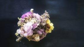 Пук высушенных цветков Statice Стоковая Фотография