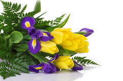 Пук желтых тюльпанов и голубых радужек на белой предпосылке Стоковые Изображения RF
