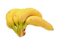 Пук зрелого банана Стоковые Фотографии RF