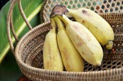 Пук зрелого банана в корзине Стоковое фото RF