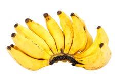 Пук зрелого банана пальца дамы изолированного на белизне Стоковая Фотография
