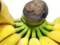 Пук излишек зрелого банана изолированного на белой предпосылке Стоковое фото RF