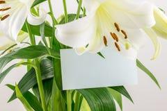 Пук карточки whith белых лилий пустой Стоковые Фотографии RF