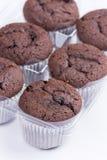 Пук коричневых булочек шоколада над белой предпосылкой Стоковая Фотография RF