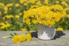 Пук красивых желтых цветков offici taraxacum одуванчика Стоковые Фото