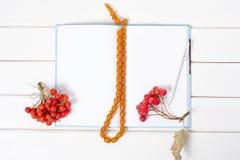 Пук красного rowanberry ягод отбортовывает ручку блокнота Стоковое Изображение