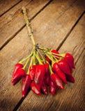 Пук краснокалильного перца Стоковая Фотография