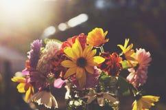Пук красочных цветков на темной предпосылке Стоковые Изображения RF
