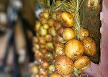 Пук луков Стоковая Фотография RF