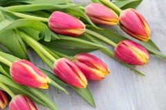 Пук много цветки тюльпана весны на таблице Стоковое Фото