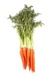 Пук морковей при листья зеленого цвета изолированные на белизне Стоковое фото RF