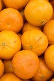 Пук оранжевой предпосылки плодоовощ Стоковое фото RF