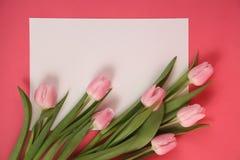 Пук открытки тюльпанов весны стоковая фотография