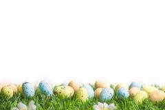 Пук пасхальных яя в пастельных цветах на траве Стоковые Фото