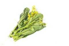 Пук популярного флористического choy зеленого цвета суммы vegetable среди Китая Стоковая Фотография RF