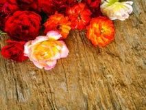 Пук роз собрал на деревенской деревянной предпосылке Стоковые Изображения