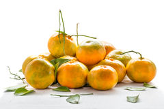 Пук свежего апельсина от сада Стоковое Фото