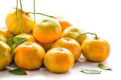 Пук свежего апельсина от сада Стоковые Изображения
