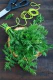 Пук свежего органического укропа на темной деревенской предпосылке, связанный с зеленым шпагатом Стоковая Фотография RF