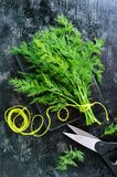Пук свежего органического укропа на черной винтажной деревенской предпосылке, связанный с зеленым шпагатом Стоковая Фотография