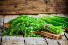 Пук свежего органического укропа с зелеными луками Стоковые Изображения RF