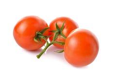Пук свежего томата с стержнем на белизне Стоковое Изображение