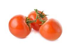 Пук свежего томата с стержнем на белизне Стоковая Фотография RF