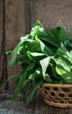 Пук свежего чеснока в плетеной корзине на деревенской деревянной предпосылке Стоковая Фотография RF