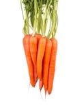 Пук свежих морковей изолированных на белизне Стоковые Фото