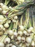 Пук свежих органических луков на рынке стоковые фотографии rf