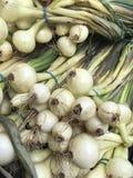 Пук свежих органических луков на рынке стоковое фото