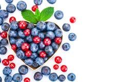 Пук свежих ягод на белой предпосылке Зрелая сладостная голубика и красная смородина стоковые изображения