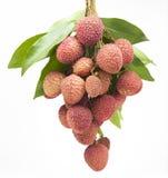 Пук свежих lychees на белой предпосылке Стоковые Фотографии RF
