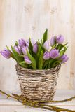 Пук сирени тюльпанов Стоковое Изображение RF