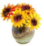 Пук солнцецветов изолированных на белой предпосылке Стоковое Фото