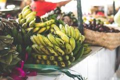 Пук средств сырцового и зрелого культивируемого банана на органическом местном рынке Стоковые Изображения RF