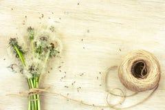Пук дуновения одуванчиков, веревочки катушки Стоковые Фотографии RF