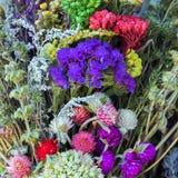 Пук цветет предпосылка стоковые фото