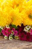 Пук цветков мамы Стоковая Фотография RF