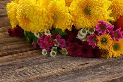 Пук цветков мамы Стоковое Фото