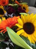 Пук цветков стоковые фотографии rf