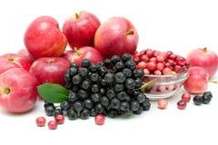 Пук черного конца-вверх chokeberry, клюквы и яблока Стоковое Фото