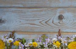 Пук fieldflowers, маргариток, лютиков, Pentecostal цветков, одуванчиков на предпосылке oldwooden с пустым космосом экземпляра Стоковое Изображение