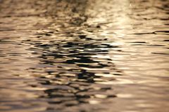 Пульсации воды на восходе солнца Стоковые Изображения