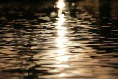Пульсации воды на восходе солнца Стоковые Изображения RF