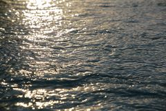 Пульсации воды на восходе солнца Стоковое Изображение