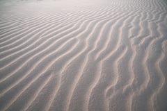 Пульсации песка на заходе солнца Стоковые Изображения RF