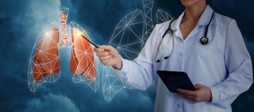 Пункты доктора к легким Стоковые Изображения